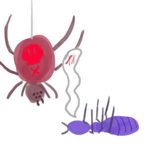 spider and ant