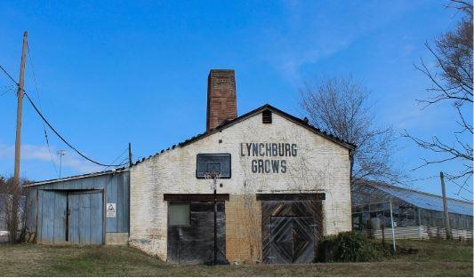 lynchburggrows.JPG