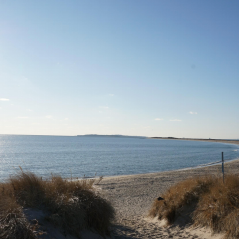 This photo was taken at Watch Hill RI. Usually this beach is crowded with people walking their dogs or going for walks but it is completely desolate